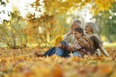 Abuelos y nieto Imagen de archivo libre de regalías