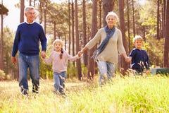 Abuelos y nietos que caminan en el campo Foto de archivo libre de regalías