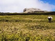 Abuna Yosef peak. Abuna Yosef - the highest peak in the mountains surrounding Lalibela, Ethiopian Highlands Stock Photos