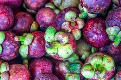 A abundância da rainha do fruto, mangoteen no mercado de fruto Imagens de Stock Royalty Free