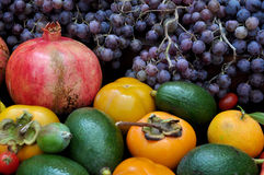 Abundance of autumn  fruits Stock Photo