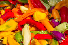 Abundance of bell peppers. Colorful heap of fresh bell peppers on a market in France Stock Photography