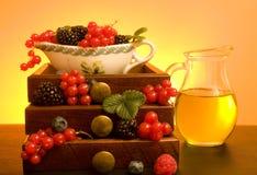 Abundance - Berries royalty free stock photo