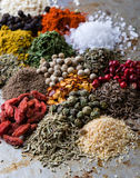 Abundance of color spices Stock Image