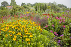 Abundance of colorful flowers in garden stock images