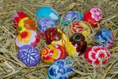 Abundance of eggs in a nest. Stock Photos