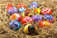 Abundance of eggs in a nest. Royalty Free Stock Photos