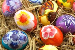 Abundance of eggs in a nest. Royalty Free Stock Photography