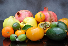 Abundance of fruits. Great abundance of autumn fruits Royalty Free Stock Photography
