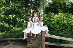 Abundance of Joy royalty free stock image