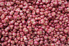 Abundance of red onions. Forming a background at market Stock Photo