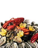 Abundance of Seafood Royalty Free Stock Photos