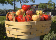 Abundance or tomato basket by Peter Hazel at art walk in Yountville, California. YOUNTVILLE, CALIFORNIA - APRIL 13: Abundance or tomato basket by Peter Hazel at stock image