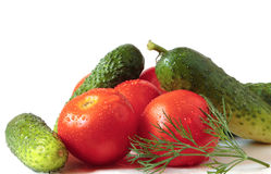 Abundance of vegetables. An abundance of tomatoes and cucumbers Stock Photos