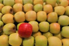 Abundancia amarilla de la jugosidad foto de archivo