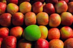 Abundancia jugosa de la fruta foto de archivo libre de regalías