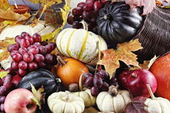 Abundant Cornucopia Stock Photography