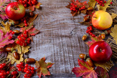 Abundant harvest concept with apples, acorns, berries and fall l stock photography