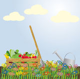 Abundant harvest. Vector illustration Royalty Free Stock Photos