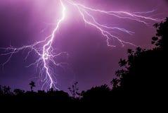 Abwärts Blitzschlag auf dunklem purpurrotem Himmel mit Schattenbild-Wald Lizenzfreie Stockfotografie