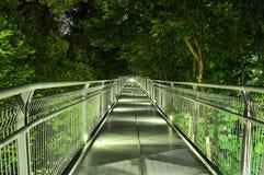 Abwärts Gehweg umgeben durch Bäume Lizenzfreie Stockfotos