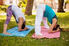 Abwärts Yogahaltung an einem Park Lizenzfreies Stockfoto