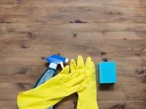 Abwaschflüssigkeit und -schwämme Gruppe Reinigungsmittel Lizenzfreies Stockfoto