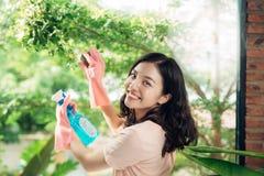 Abwaschflüssigkeit und -schwämme Nettes asiatisches Frauenreinigungsfenster Lizenzfreies Stockfoto
