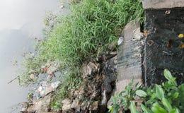 Abwasser, das vom Abfluss zum allgemeinen Fluss fließt Stockfoto