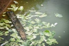 Abwasser der Umweltverschmutzung Lizenzfreies Stockbild