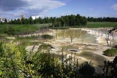 Abwasser entladen in den Teich Die Zerstörung der Natur Die Gesundheit und das reine Wasser Lizenzfreie Stockbilder