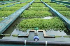 Abwasserbehandlung Lizenzfreies Stockfoto
