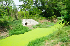Abwasserkanalüberlauf Stockfotografie