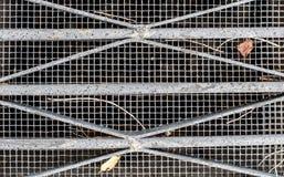 Abwasserkanal/Belüftungsgitter mit Blättern und Stöcken Stockfotos