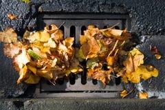 Abwasserkanal verstopft mit gefallenen Blättern Lizenzfreie Stockfotografie