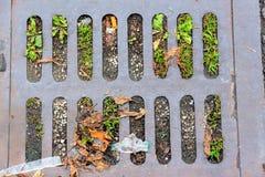 Abwasserkanaldeckelgitter mit Gras Stockfotos