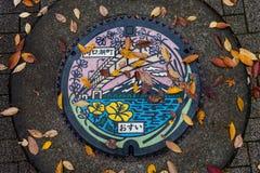 Abwasserkanaleinsteigeloch der Kawaguchiko Seekunst-Farbstraße Lizenzfreies Stockbild