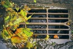 Abwasserkanalgitter mit gefallenen Blättern nach Herbstregen Lizenzfreie Stockbilder
