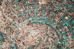 Abwasserkanalluke unter gefärbtem Gras Hintergrund, Muster Lizenzfreie Stockbilder
