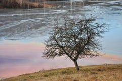 Abwasserverschmutzung einer Kupfermine Geamana, Rosia Montana, Lizenzfreies Stockfoto