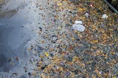 AbwasserWasserverschmutzungsabfall in der Wasserhose Stockbilder