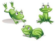żaby Obrazy Stock