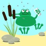 Żaby bagna odpoczynkowe płochy i muszka Zdjęcia Stock