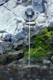 Żaby fontanna Obraz Royalty Free