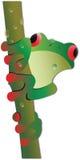żaby ilustraci drzewo Fotografia Stock