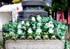 Żaby omamori W świątyni, Nagahama, Japonia fotografia stock