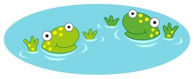 Żaby w wodzie Fotografia Stock