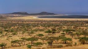 Abyata Lake Stock Images
