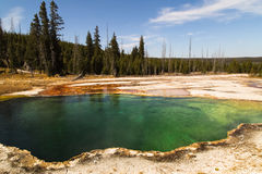 Abyss Pool in the West Thumb Geyser Basin,forest and sky as background Yellowstone National Park, reflections,morning,WY,USA. Geyser pool in the morning. Green Royalty Free Stock Photos