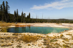 Abyss Pool in the West Thumb Geyser Basin,forest and sky as background Yellowstone National Park, reflections,morning,WY,USA. Geyser pool in the morning. Green Stock Photography